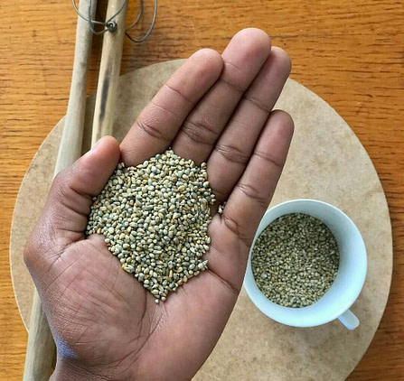 Nigerian pearl millet: 10 proven health benefits and nutrition