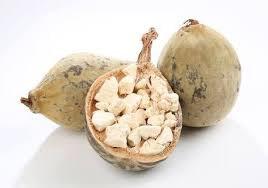Baobab may help lower blood sugar levels